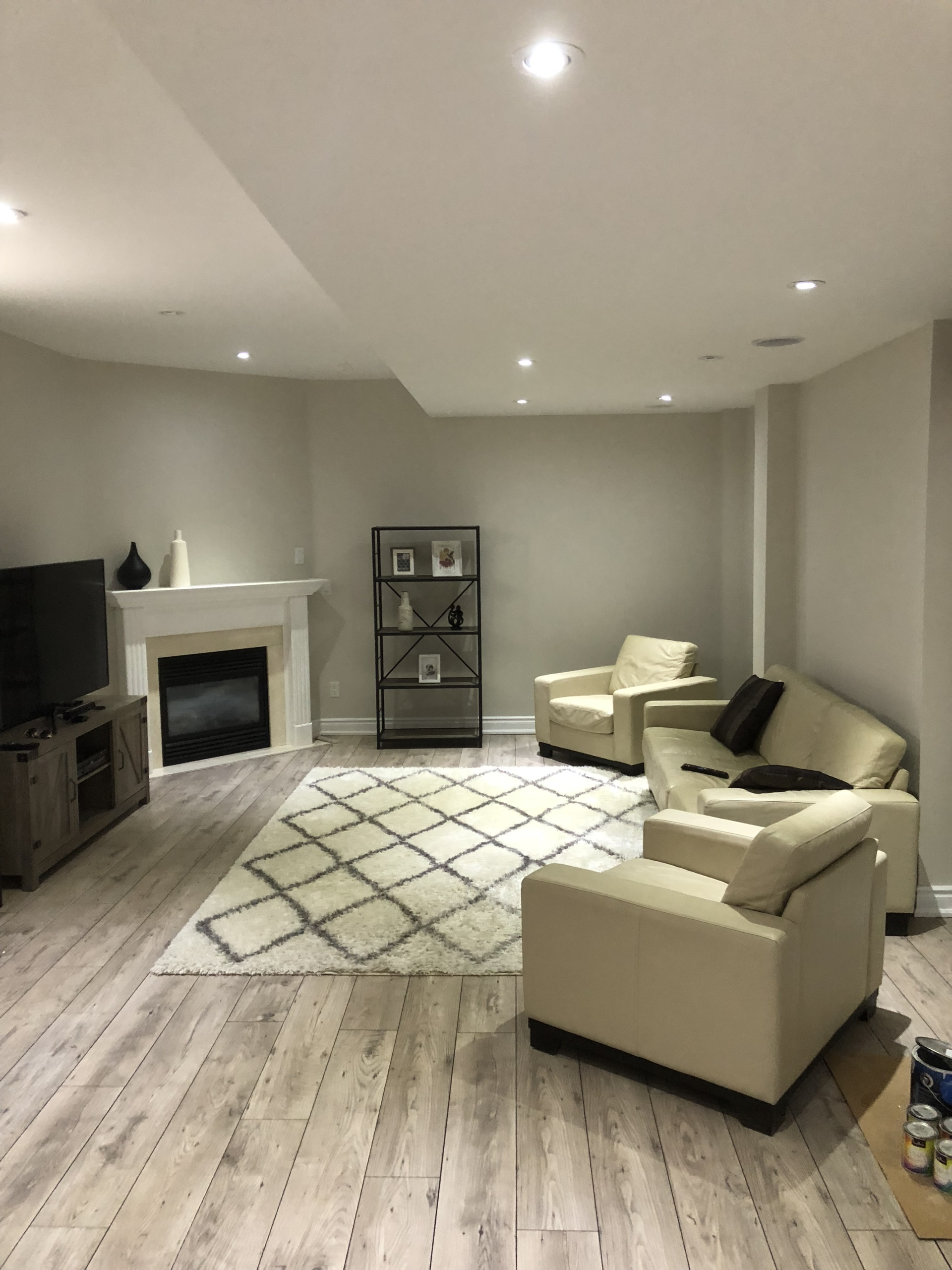 Basement Full Renovation (5)